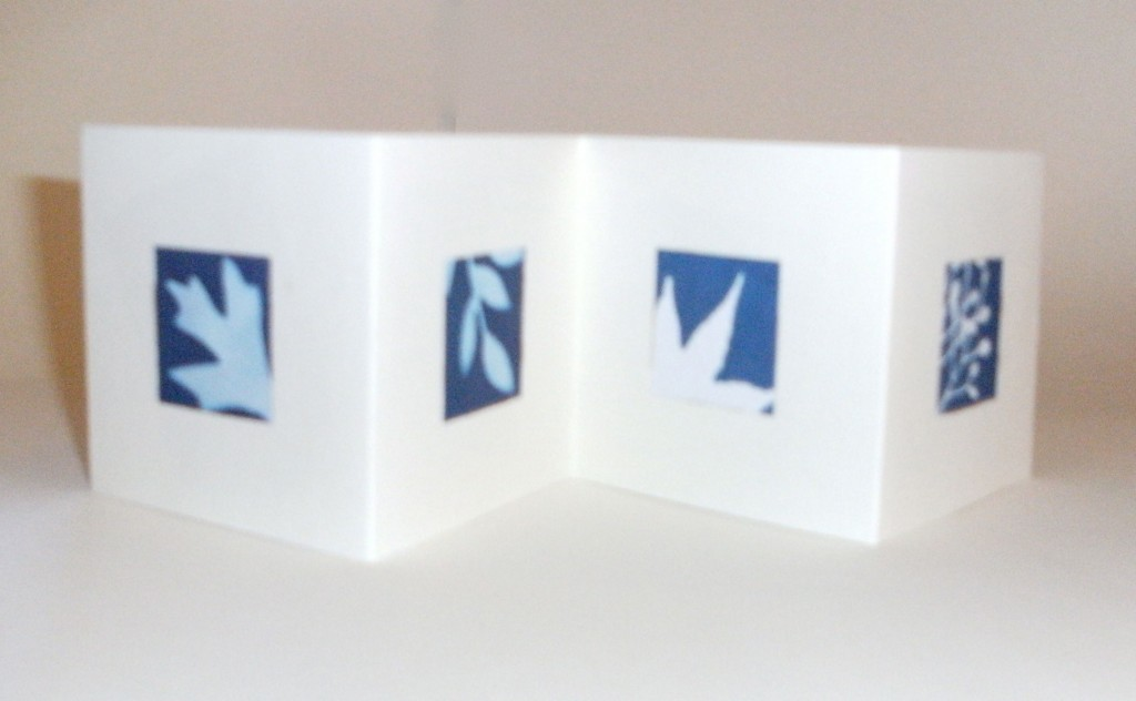 Simple Sunprints Accordion Fold Book