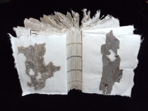 Coptic Stitch Binding on Elephant Dung Paper with Eco-prints